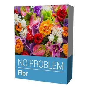 Picture of NO PROBLEM SOFTWARE FLOR